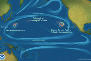 6 The North Pacific gyre