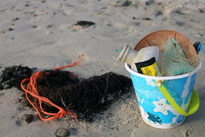 Litter collected on the beach within a few  minutes