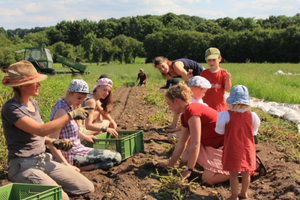 CSA Hof Pente – Community-supported agriculture