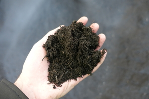 """<div class=""""bildtext_en"""">Cleanest screen cuts with the new 3D COMBI compost screen from SPALECK - here </div><div class=""""bildtext_en"""">0–10 mm screen cut</div>"""