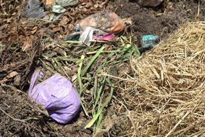 """<div class=""""bildtext"""">""""Störstoffe am Beginn der Kompostierung raus zu holen, ist technisch und arbeitsrechtlich nahezu unmöglich"""", sagt Hubert Seiringer</div>"""